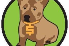 小狗币CORG发现总量多少,小狗币可以买卖的交易平台