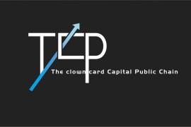 TCP代币项目用于什么方面,TCP发行总量多少