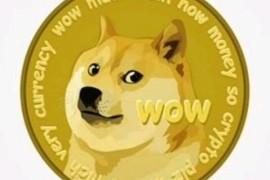 狗狗币未来前景怎么样,2021年最有可能暴涨的虚拟货币