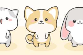 币安链bakeswap项目pet资料